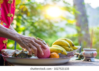 Hand of old woman preparing a food, pox, chicken, fruits for pray and make offering. For luck In various events such as New Year, and a new home, ordained, and marriage.
