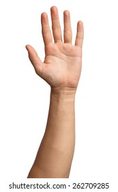 Hand on Isolated white background. Alpha. Five fingers. Palm.