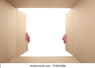 hand open cardboard box. portrait from inside the box