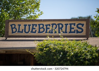 Hand Painted Blueberries Sign