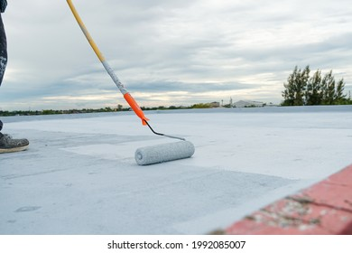 Hand painted gray flooring with paint rollers for waterproof, reinforcing net,Repairing waterproofing deck flooring.