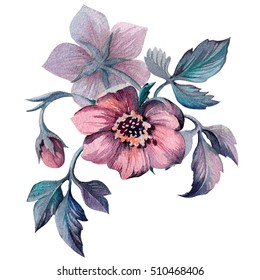 Hand painted illustration of watercolor flowers