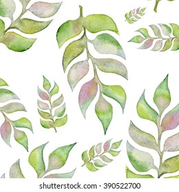 Hand painted water color plants. Isolated floral design elements, botanical style art work.