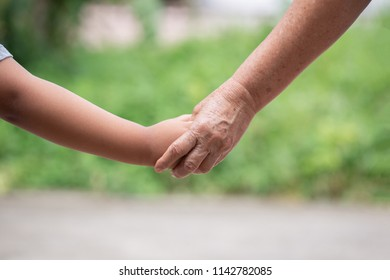 hand of parent and child on the background blurred nature.Mother holding hands baby