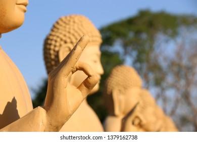 hand posture ohm