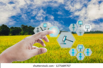 Hand press button participate in auction,icon of agricultural product auctioneer,with sky background and organic fields, concept offer of agricultural products and futures trading advanced technology