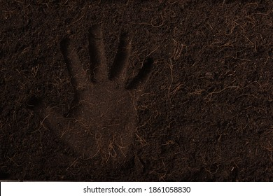 Hand print in black land for plant background, Top view of Handprint on fresh soil with mulch for gardening texture, World Soil Day concept