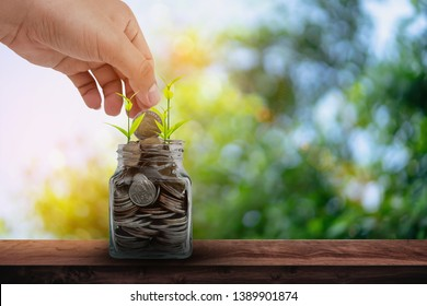 Hand putting coins into clear bottle on wood table with green bokeh natural background.