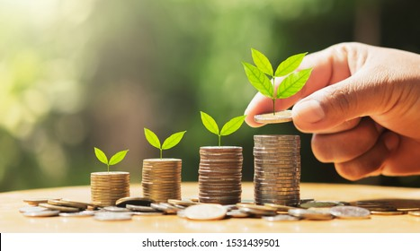 hand putting coins on stack with plant growing on money . concept finance and accounting