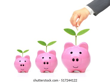 Hand putting a golden coin into pink piggy bank with small, medium, and large size - young generation doing green saving concept