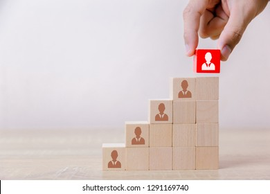 Hand putting wood cube block ladder to the top,human resource management and recruitment business concept, Business Strategy to success.