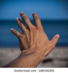 Hand reaching out to the sea