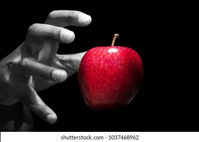 Hand reaching for a red apple, the forbidden fruit, in black background.