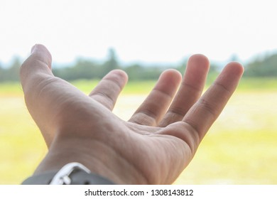 Hand reaching for the sky, Hand reaching to towards sky, Hand of a man reaching to towards sky