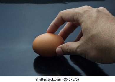 Hand selected Egg