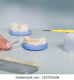 hand with shade guide to check veneer of tooth crown in a dental laboratory