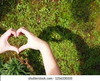 Hand shape by hand with shadow on grass background/heart shape by hand