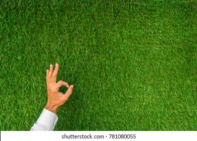 Hand showing good okay symbol with a blank on a green grass background