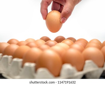 Hand taking an egg from paper pack, isolated on white background.