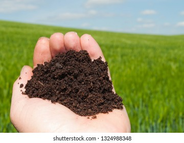 Hand with topsoil in front of a field