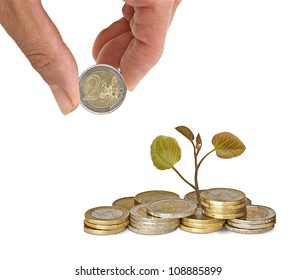 hand and a tree growing from pile of coins