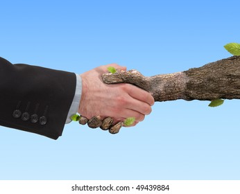 Hand tree, like a human hand shakes the hand of man, in a sign of unity of humankind and nature