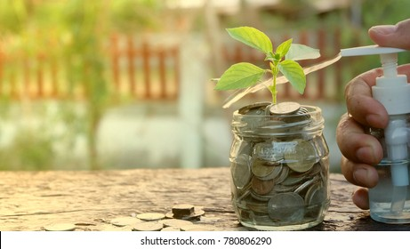 Hand with water bottle spraying plants growing over coins in glass jar.Saving,growth business,interest,Education cost and money themes concept.