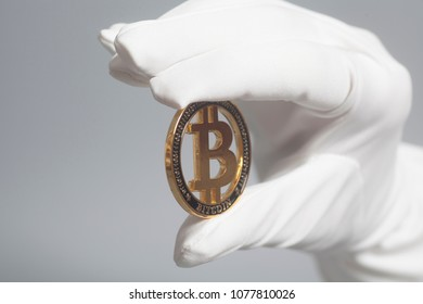Hand in White Glove holds Golden Bitcoin Crypto Currency on gray.Mining concept.