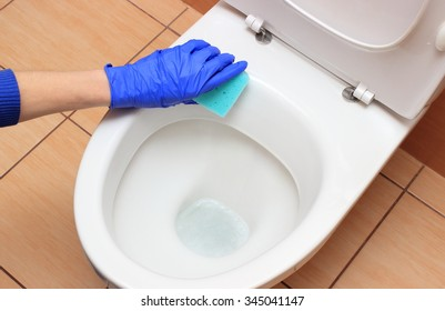Hand of woman in blue glove cleaning toilet bowl, concept for house cleaning and household duties
