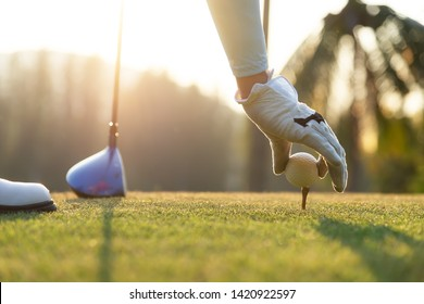 hand of woman golf player gentle put a golf ball onto wooden tee on the tee off, to make ready hit away from tee off to the fairway ahead. Healthy and Lifestyle Concept.