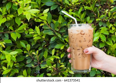 Hand woman holding the glass iced coffee on green nature background,Iced latte coffee