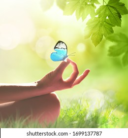 hand of a woman meditating in a yoga pose on the grass and butterfly