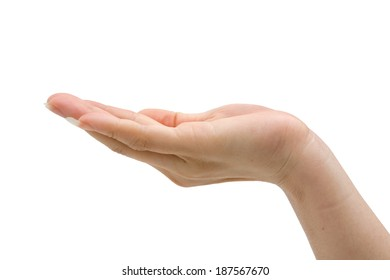 hand of woman on the white background. Hand of beautiful and nurturing women.