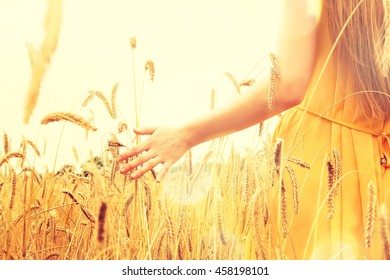 Hand of a woman in a wheat field.