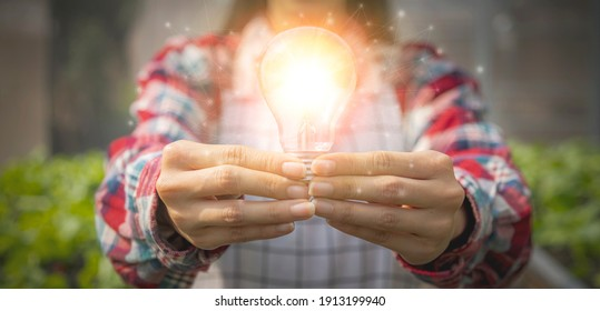 Hand of young asia woman holding light bulbs with glowing in organic vegetable greenhouse, creativity and saving energy with light bulbs concept.