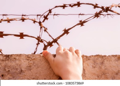 hand of a young thief clinging to a fence with a loop of rusty barbed wire against a blue sky, toning