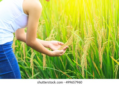 Hand of Young Woman Enjoying Nature meadow with sunrise.