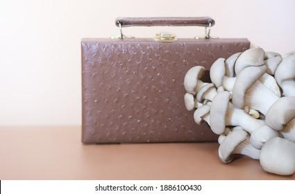 Handtasche aus Myzelleder, nachhaltige Alternative zu Leder auf Bio-Basis aus Pilzsporen und Pflanzenfasern. Pilztextilien-innovative Materialien. Öko-Bio-Edelleder