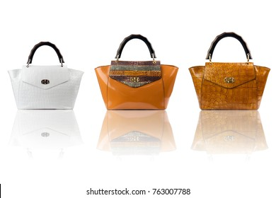 Handbags collection on reflected surface isolated on white background.Front view.