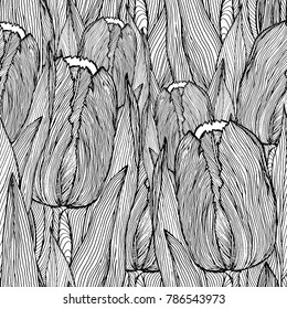 hand-drawn tulip flowers background, line drawing in black and white