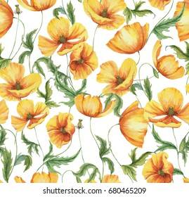 Hand-drawn watercolor floral seamless pattern with the yellow poppy flowers on the white background in vintage style. Natural and vibrant repeated print for textile, wallpaper. Wild blossom