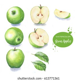 Hand-drawn watercolor illustration set of the green apples fruits. Food drawing isolated on the white background. Apples harvest clip-art for package design