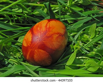 hand-dyed easter egg on bed of fresh grass