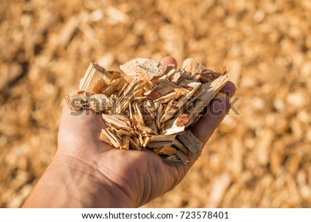 A handful of dry technological wood chips. Selective focus.