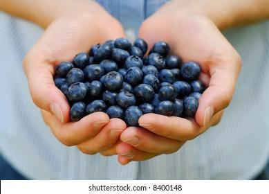 Handful of fresh organic blueberries