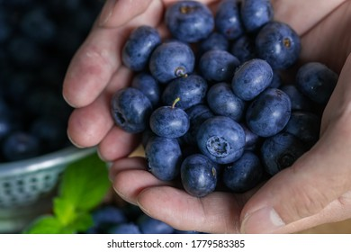 Handful of fresh ripe blueberries.