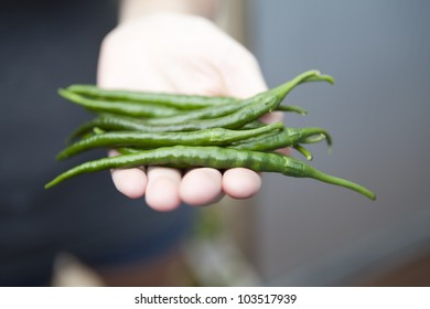 A handful of green chili's
