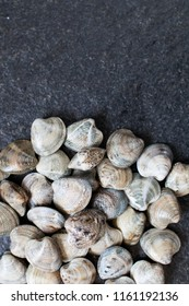 """handful of """"lupini"""" type clams on a black granite table ready to be cooked. raw food molluscs"""