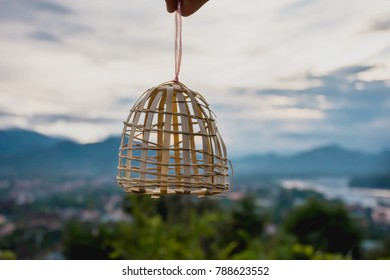 the handicraft bamboo it is cage bird