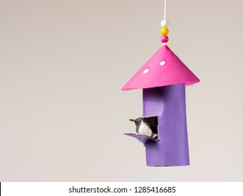 Handicraft of a colorful bird house and a small bird made of toilet paper roll by a child, hanging on a thread with beads